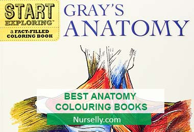 BEST ANATOMY COLOURING BOOKS