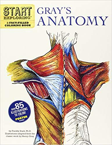 Start Exploring: Gray's Anatomy - Best Anatomy Coloring Book for College